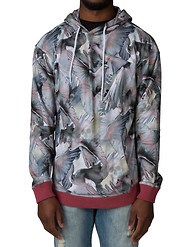 PLAY CLOTHS AVIARY HOODIE